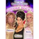 Travesti show- Hrádek