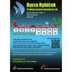 Burza rybiček - prodejní trhy akvarijních ryb- Praha