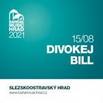 DIVOKEJ BILL- koncert v Ostravě- BARRÁK MUSIC HRAD 2021 Ostrava