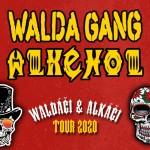 WALDA GANG & ALKEHOL- WALĎÁČI & ALKÁČI- koncert Kolín