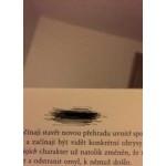 Analýza bydlení- Pardubice