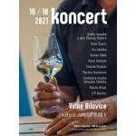 Koncert- Velké Bílovice